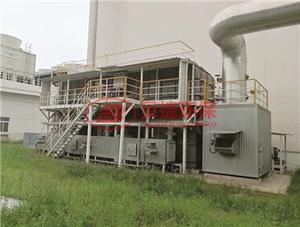 废气处理惩罚设备 保护膜行业